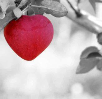 Brujería Sencilla Para el Amor Caseros