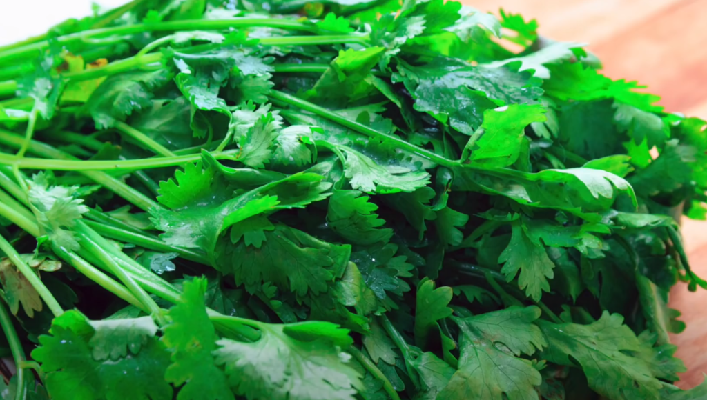 Potente baño de cilantro